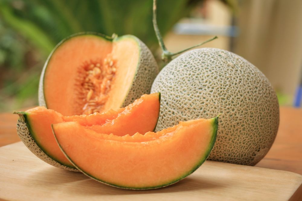 Cantaloupe Benefits / Cantaloupes have high content of polyphenol antioxidants which enhance the immune function and cardiovascular system.